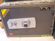 Flame Vault  Hayman  FV-137C